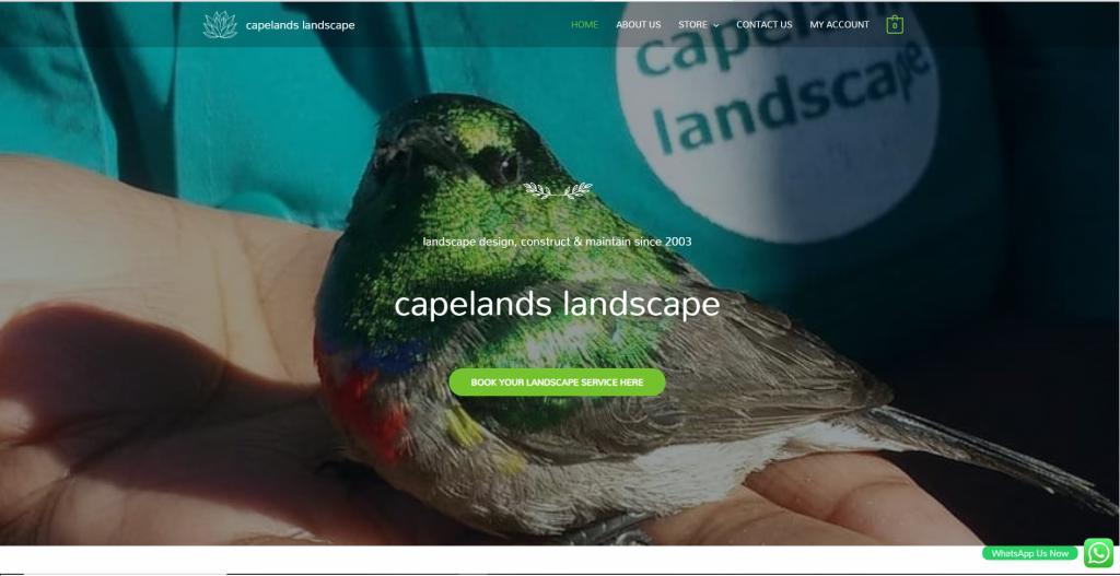 Capelands Landscape